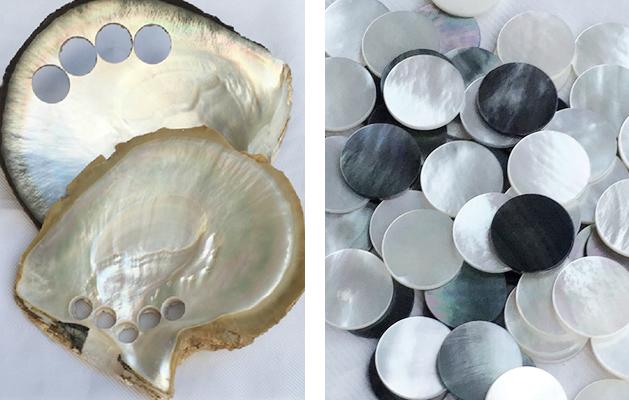 貝釦のイメージ